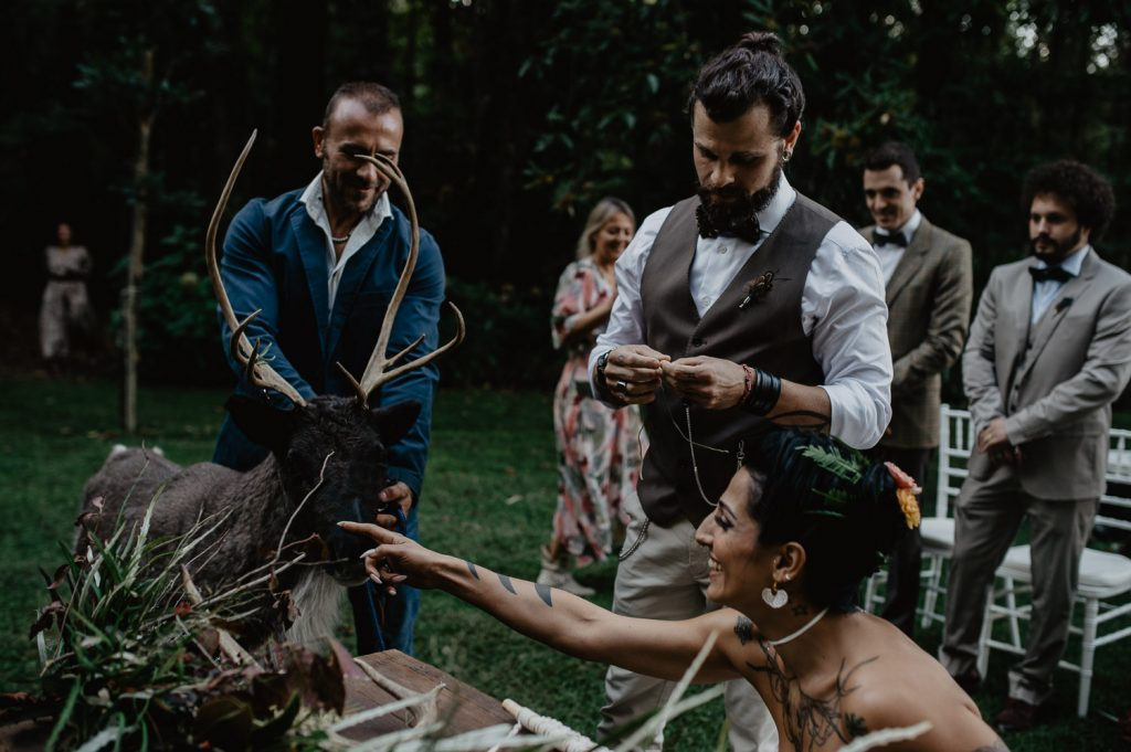 bride touch an elk during his wedding