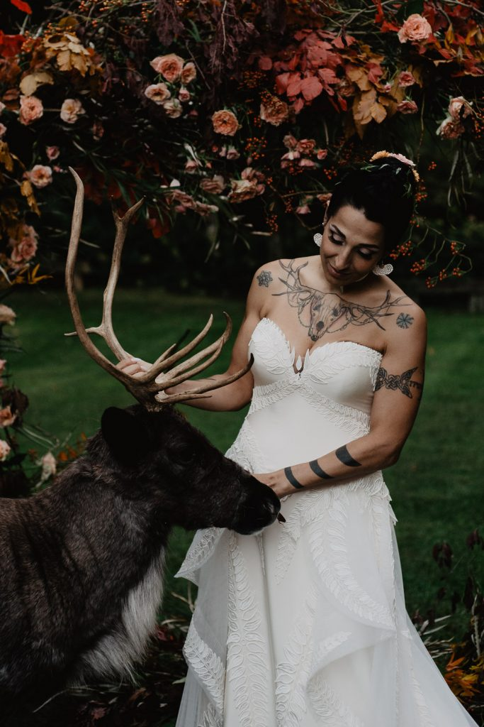photo with the bride and an elk